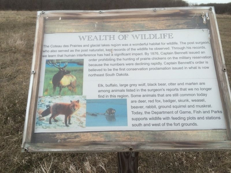Wealth of Wildlife Marker image. Click for full size.