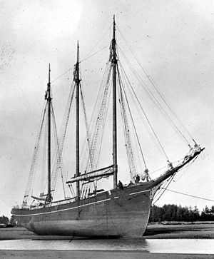 C.A. Thayer, launched November 12, 1895 image. Click for full size.