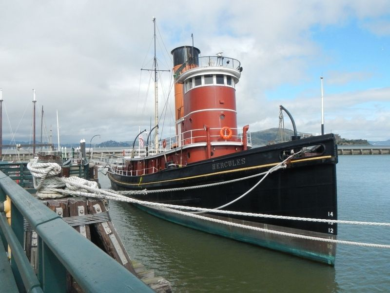 Steam Tug <i>Hercules </i> image. Click for full size.