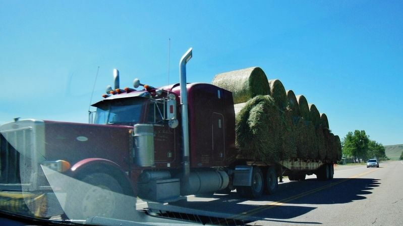 Loaded Hay Roll Truck image. Click for full size.