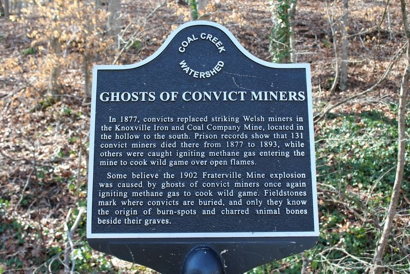 Ghosts of Convict Miners Marker image. Click for full size.