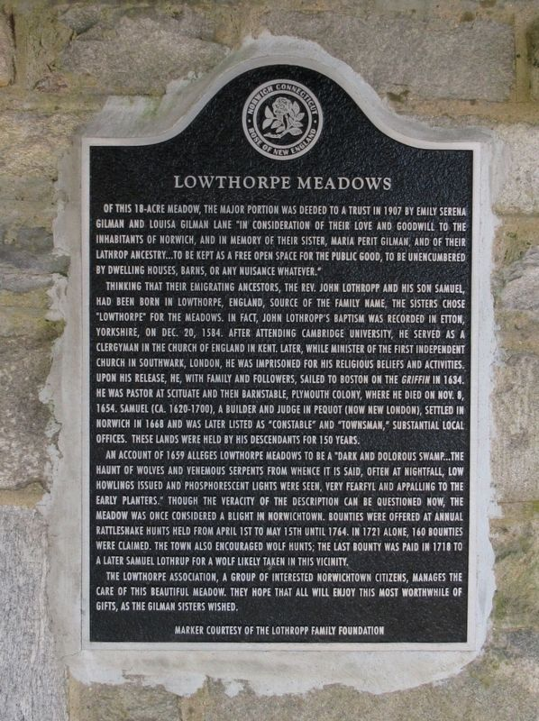 Lowthorpe Meadows Marker image. Click for full size.