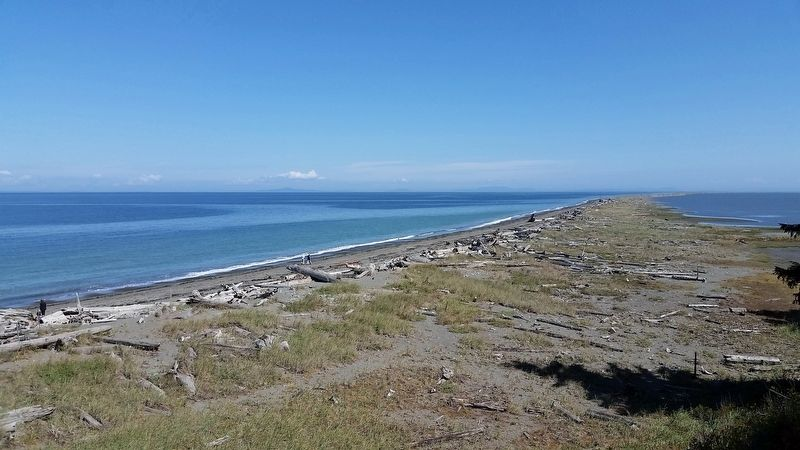 Dungeness Spit (<b><i>view northeast toward lighthouse from mainland</b></i>) image. Click for full size.
