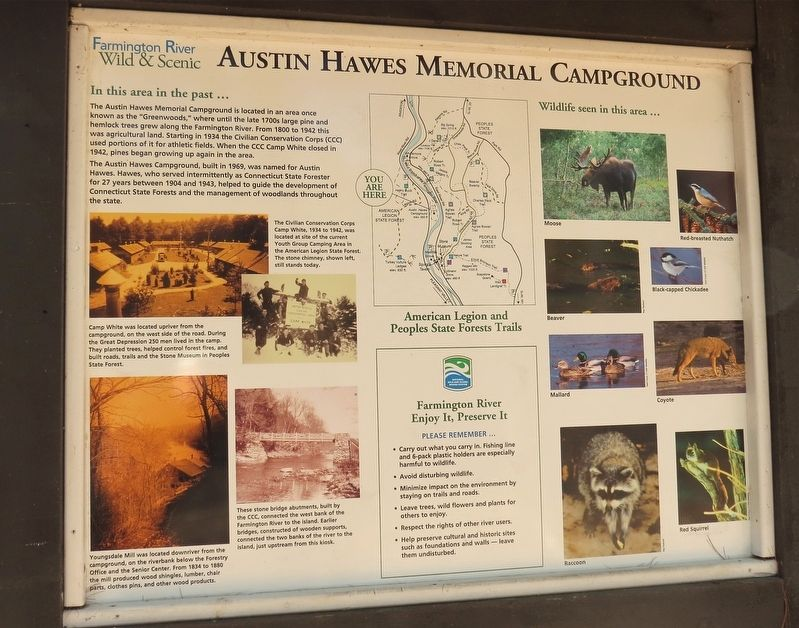 Austin Hawes Memorial Campground Marker image. Click for full size.