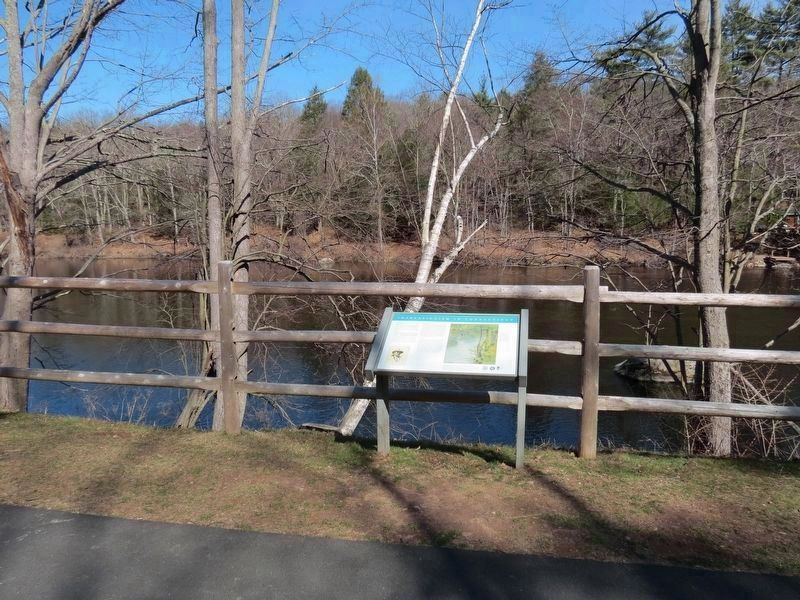 Viewpoint from the Farmington River Trail in Burlington. image. Click for full size.