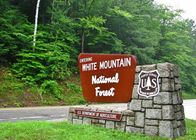 White Mountain National Forest Sign (<b><i>near marker</b></i>) image. Click for full size.