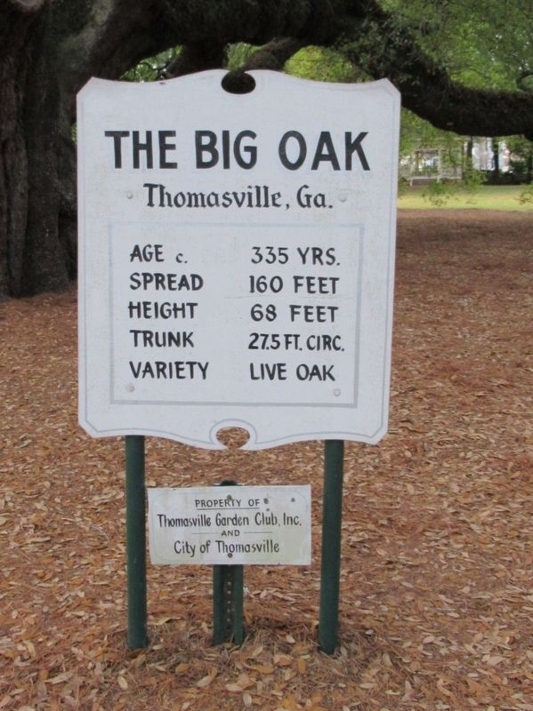 The Big Oak Marker image. Click for full size.