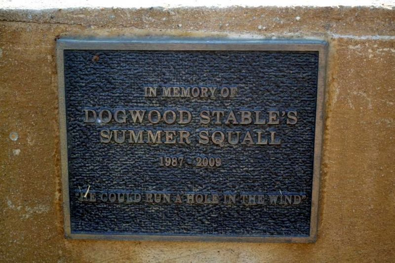 Summer Squall Memorial<br>Located on the Water Trough image. Click for more information.