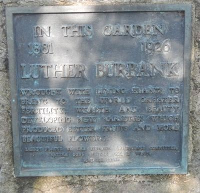 Luther Burbank's Garden Marker image. Click for full size.