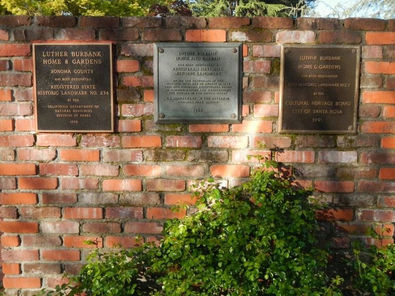 Additional plaques located at Luther Burbank Home & Gardens image. Click for full size.