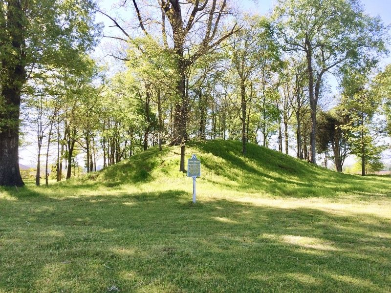 View of marker and Indian Mound in background. image. Click for full size.
