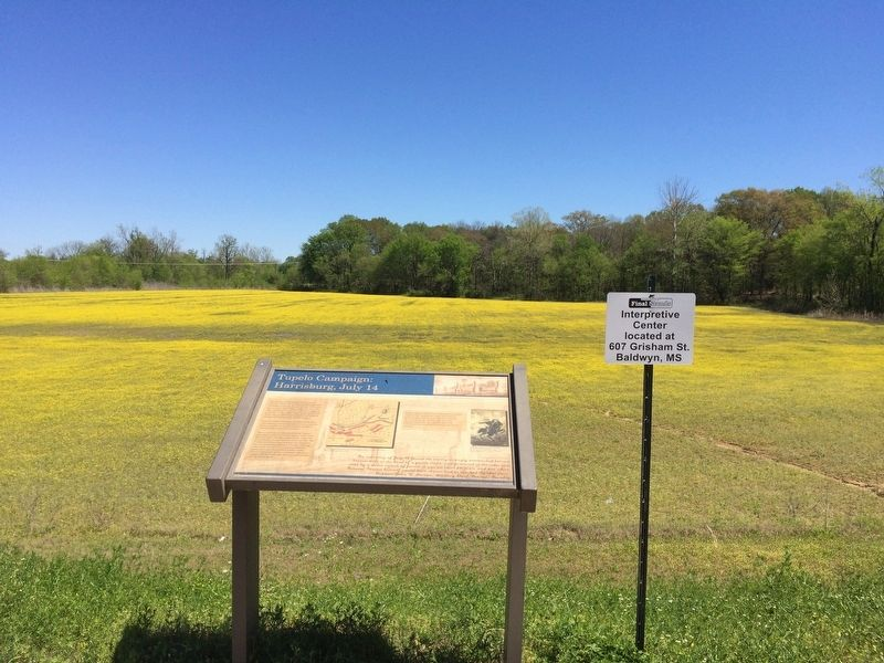 View of battlefield, recently saved, and marker. image. Click for full size.