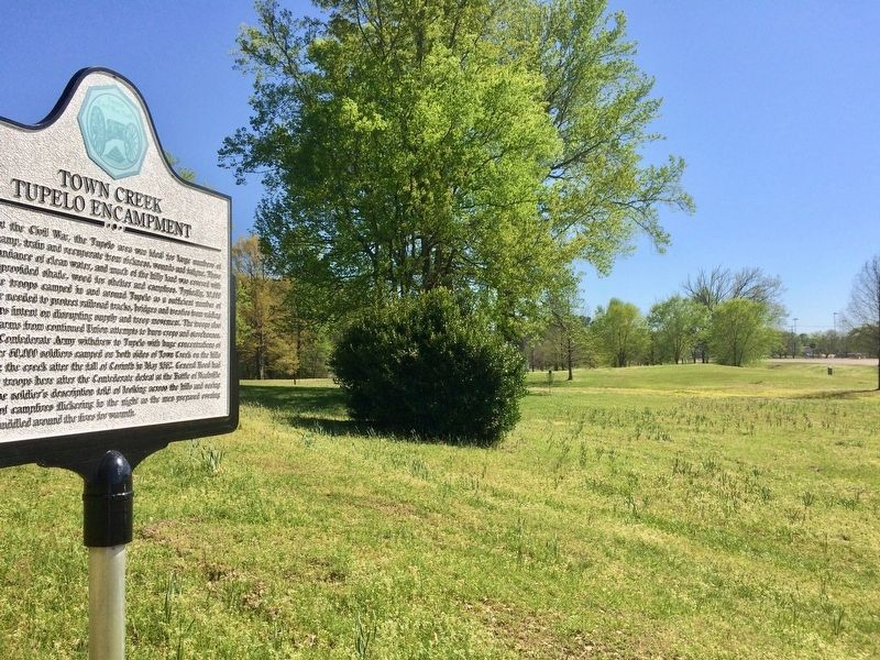 View from marker looking south towards the Elvis Presley Birthplace & Park. image. Click for full size.