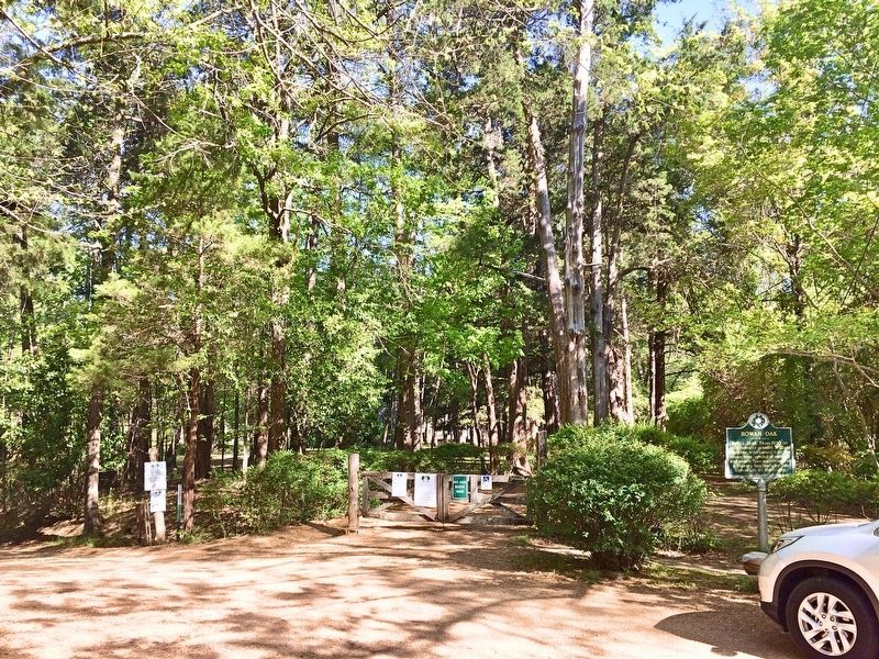 Entrance area to Rowan Oak. image. Click for full size.