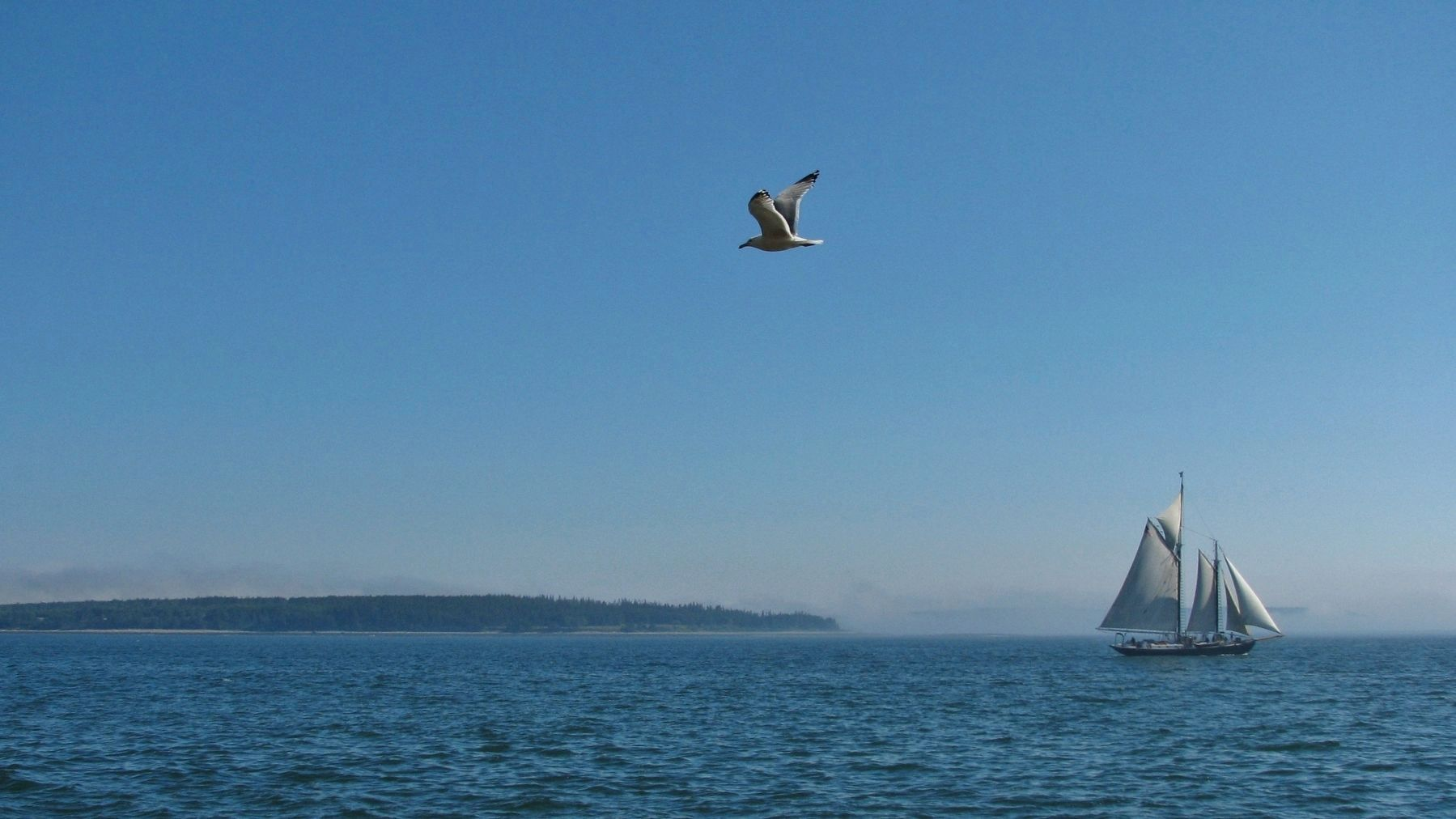Gull & Schooner(<i><b>view from light station</i></b>) image. Click for full size.