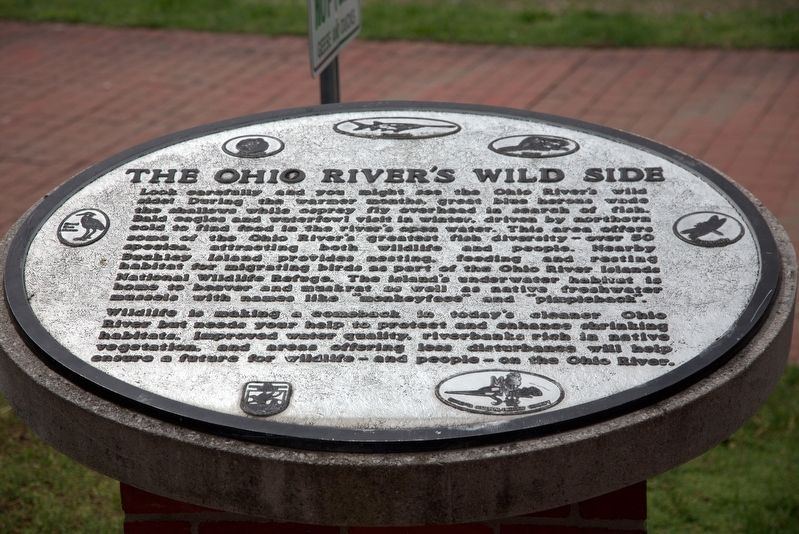 The Ohio River's Wild Side Marker image. Click for full size.