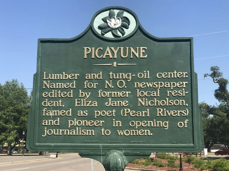 Picayune Marker image. Click for full size.