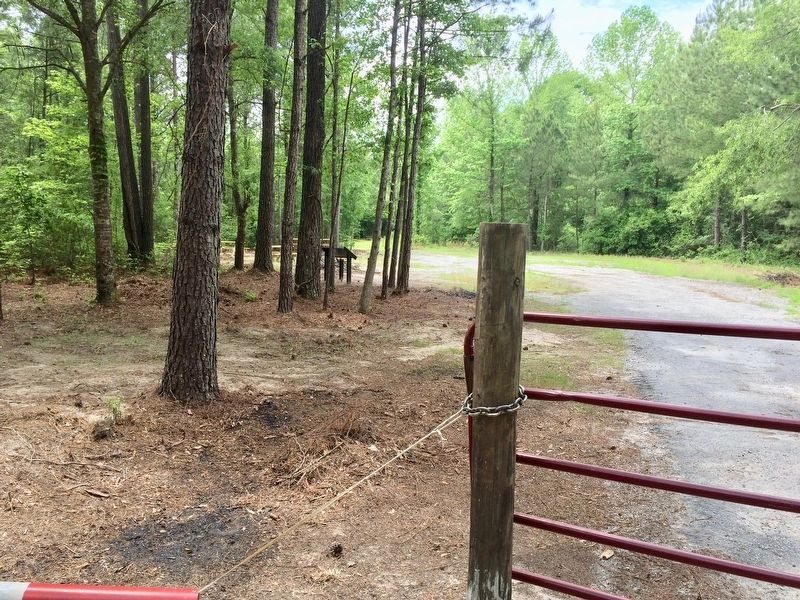 View from the road towards marker and picnic tables. image. Click for full size.