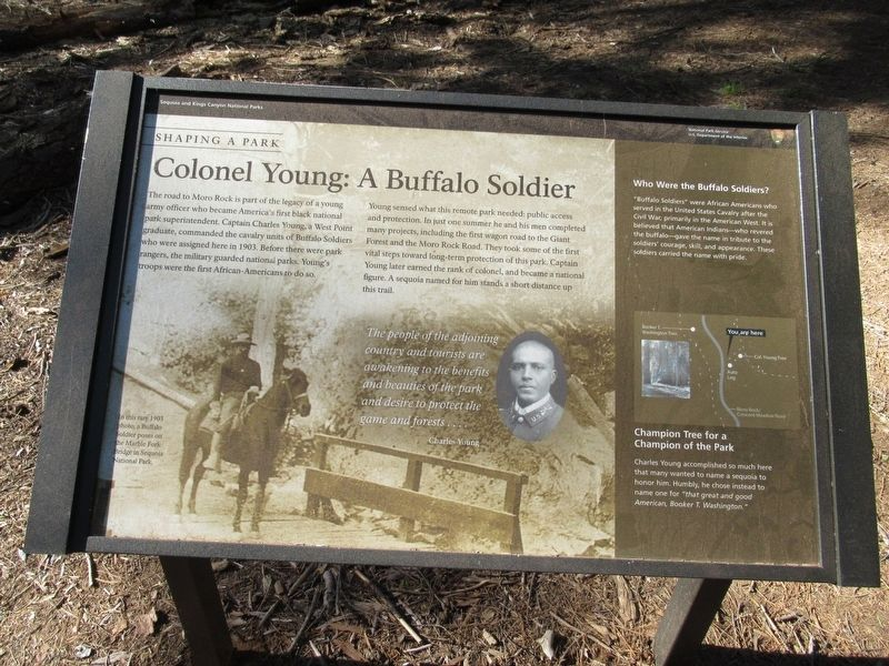 Colonel Young: A Buffalo Soldier Marker image. Click for full size.