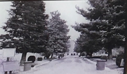 Memphis National Cemetery, 1906 photo