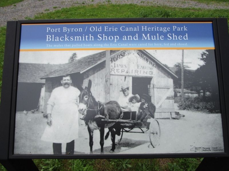 Blacksmith Shop and Mule Shed Marker image. Click for full size.