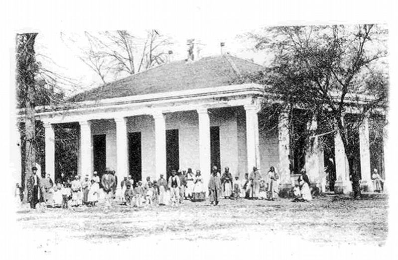 Hurricane plantation library. image. Click for full size.