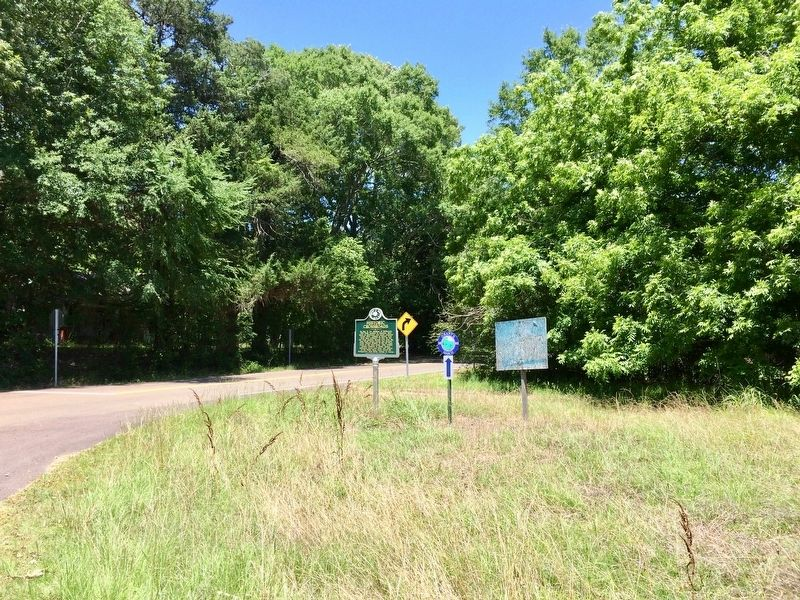 View of marker looking north on Old Port Gibson Road. image. Click for full size.
