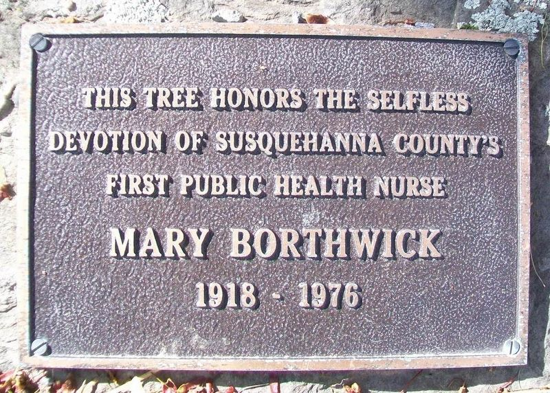 Mary Borthwick Marker image. Click for full size.