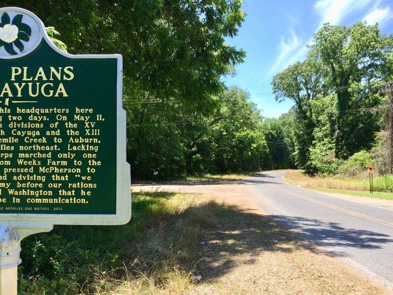 View from marker south to the Old Port Gibson & Cayuga Road intersection. image. Click for full size.