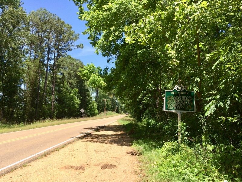 Looking north on Old Port Gibson Road. image. Click for full size.