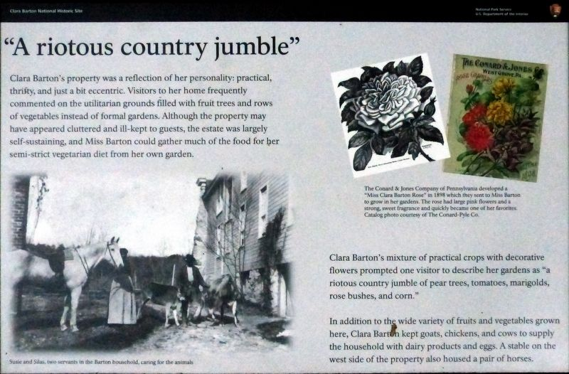 """A riotous country jumble"" Marker image. Click for full size."