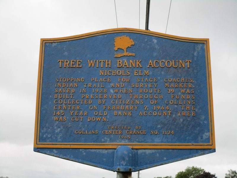 Tree With Bank Account Marker image. Click for full size.