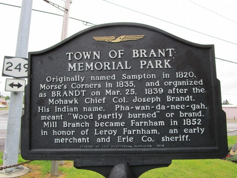 Town of Brant Memorial Park Marker image. Click for full size.