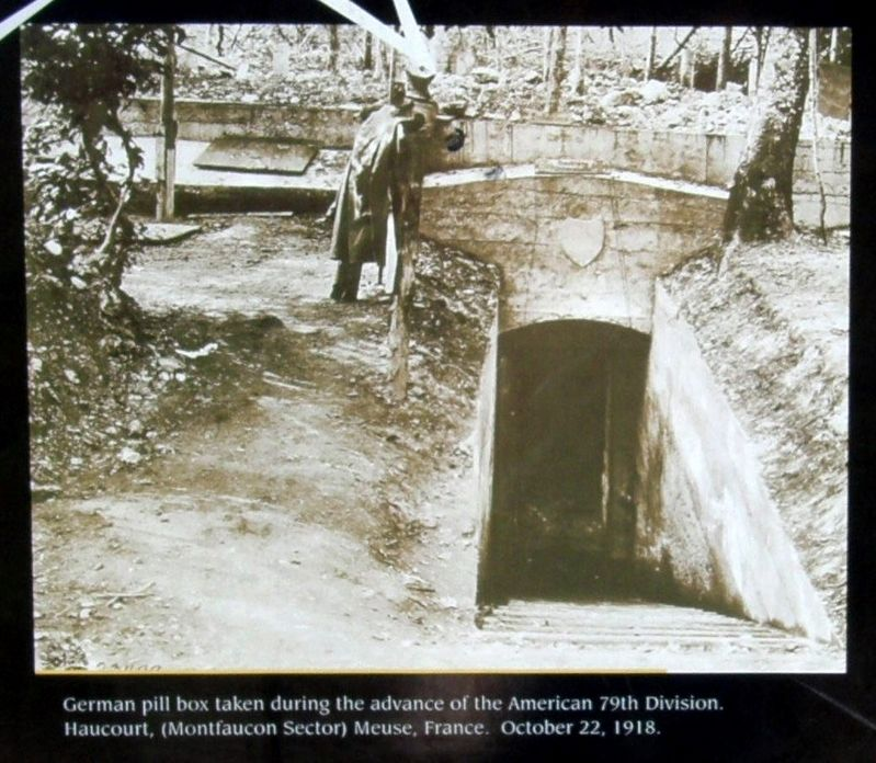 Insert - Pillbox entrance image. Click for full size.