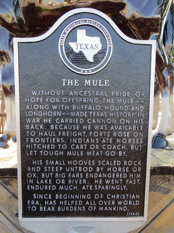 The Mule Marker image. Click for full size.