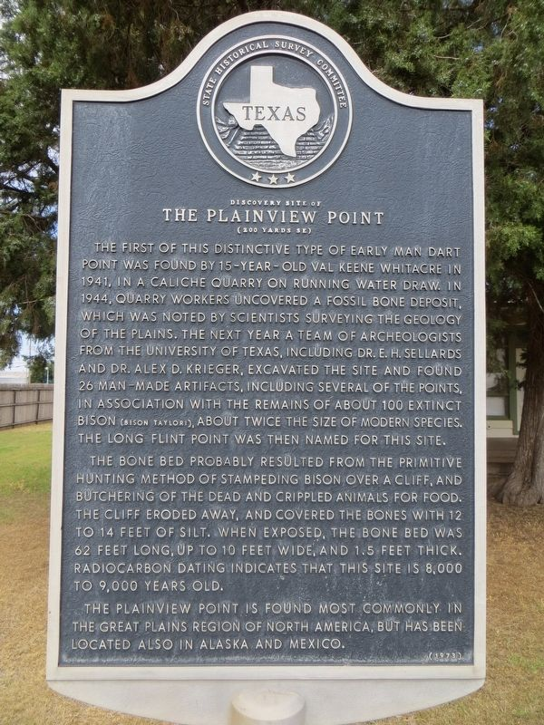 Discovery Site of the Plainview Point Marker image. Click for full size.