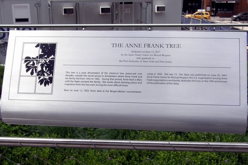 The Anne Frank Tree Marker image. Click for full size.