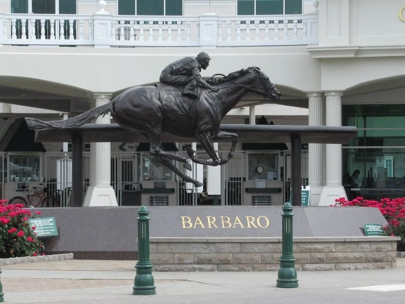 Barbaro, Winner of the 2006 Kentucky Derby image. Click for full size.