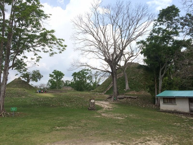 A view towards the south of the Altun Ha site from the marker's kiosk image. Click for full size.
