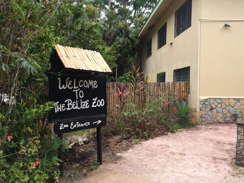 The entrance to the Belize Zoo from the visitors parking lot image. Click for full size.