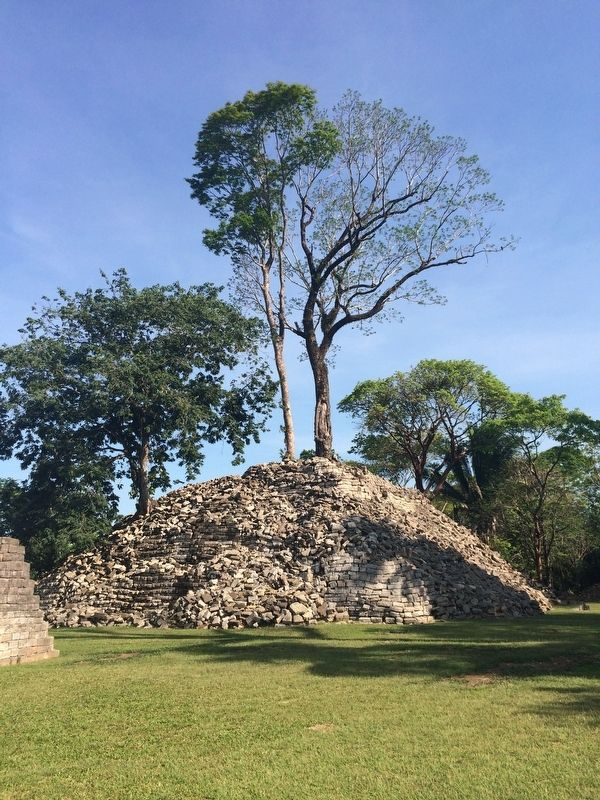 A distinctive temple at Lubaantún, with trees growing from it. image. Click for full size.