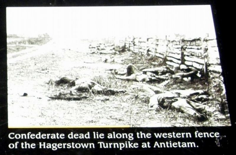 Insert - Confederate dead at Antietam image. Click for full size.