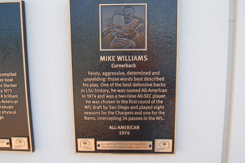Mike Williams Marker image. Click for full size.