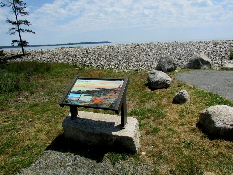 Natural Seawall Marker image. Click for full size.