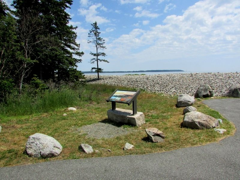 Marker in the Seawall Picnic Area image. Click for full size.