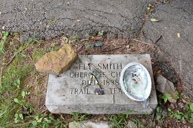 Grave site of Chief Fly Smith image. Click for full size.