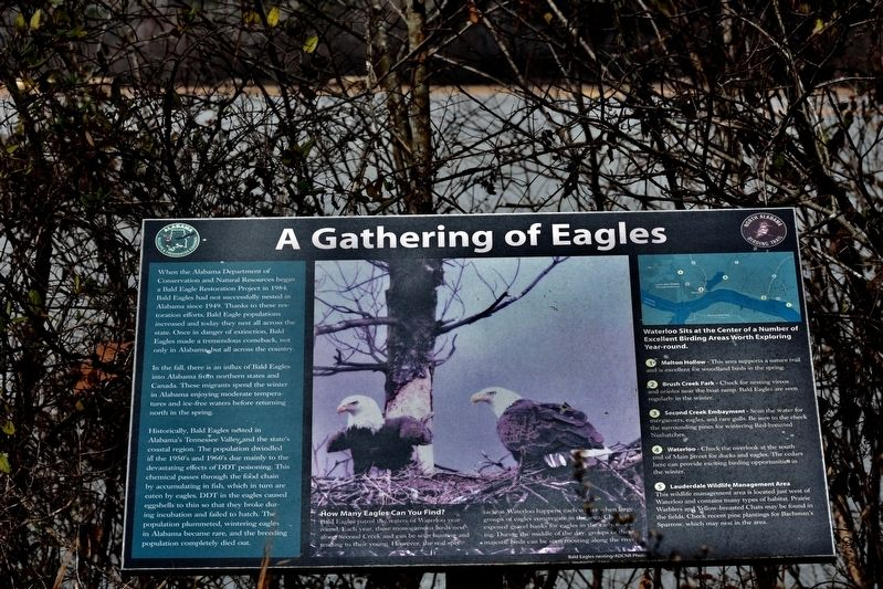 A Gathering of Eagles Marker image. Click for full size.