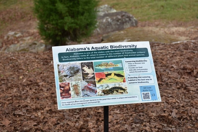 Alabama's Aquatic Biodiversity Marker image. Click for full size.