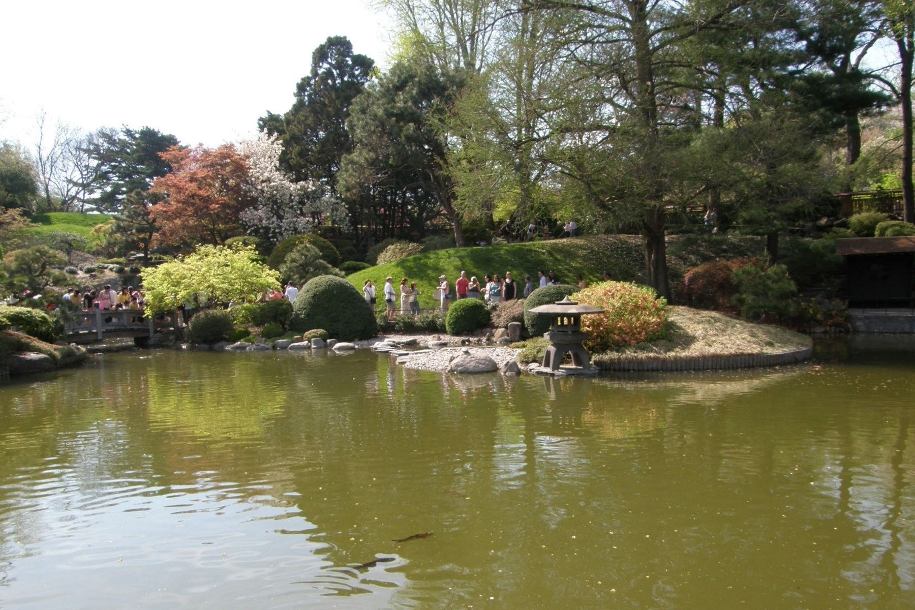 The Japanese Hill-and-Pond Garden image. Click for full size.