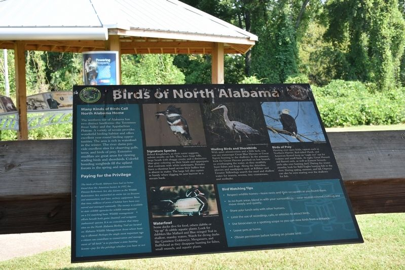 Birds of North Alabama Marker image. Click for full size.